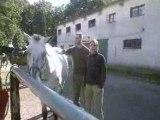 2008-07 [Osmoy] Balade à cheval en forêt de Rambouillet 1
