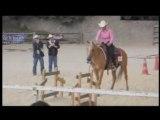 Concours FFE western, Greg's Barn