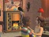 Les Sims 2 : La vie en appartement