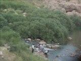Kurdish song Chopy - Greftari tom