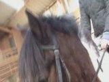 Détente concours poney du 03/02/08 3eme partie