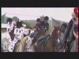 spectacle equestre 101dalmatiens