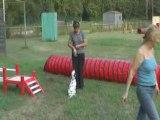 Diva premiers pas agility 1 aout 2008