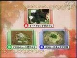 HN-okinawa-⑦2/4