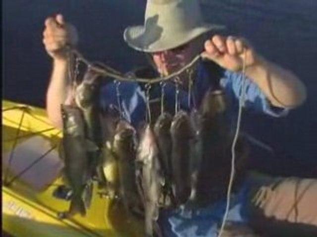 Kayak Fishing Trailer