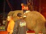 spectacle au cirque a noirmoutier avec mamie catherine(2 aout 2008)
