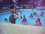 Photo vacances merville franceville 104