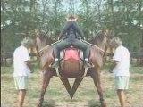 DELIRES Equestres a THELEME (chez P.Cougul)