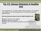 Organic Gardening Pest Control Tips - 3 Quick Tips Before Yo