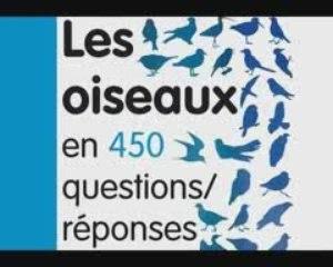 Les oiseaux en 450 questions/réponses