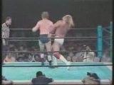Hogan vs backlund China