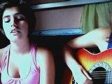 Je viens du sud - Michel Sardou guitare et chant