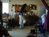 sisi homer en mode shuffle