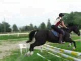 cheval parcours