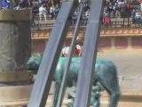 puy du fou 2008 Grillo stadium les gladiateurs