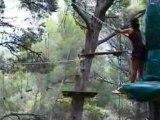 Acro branche