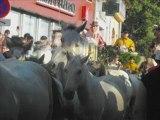 video photo Fete de lunel 2008