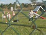 Silver Open agility eurocopter