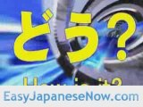 Learn Japanese | Japanese Words For Hello Or Greetings
