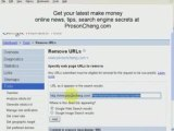 Search Engine secrets - Remove indexed web pages from google