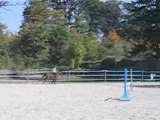 Cours obstacle 092