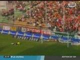 Toulouse TFC-Valenciennes 1-0: Toulouse  Dauphin Ligue 1