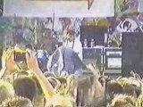 Blink-182 - Peggy Sue (Live Warped Tour 1999)