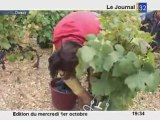 Vendanges exceptionnelles 2008 en Champagne!
