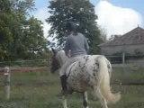02-10-08 - 8 - Isa à terre à cheval avec Gipsy