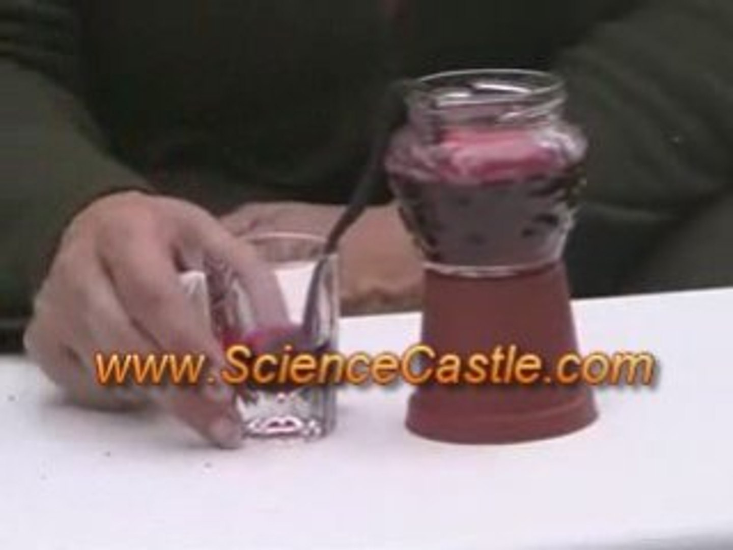 Plants Science Kit - Watering System Science Experiment
