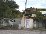 roller chute frankoi le gogol