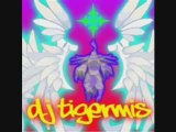 DJ Tigermis - Bang it le Hardcore Techno Hardstyle MegaMix