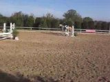 cheval cso
