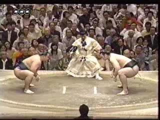 2006_05_15_chiyotai_kotooshu