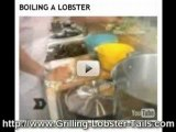 red lobster recipes for grilling lobster tails