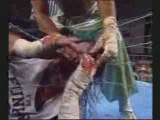 WWE Vs ECW : ECW November To Remember 2008