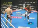Mirko Cro Cop vs Bob the beast Sapp