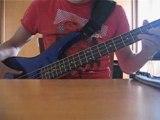 The strokes Reptilia bass cover