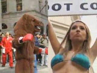 Bear vs. Bull on Wall Street