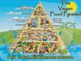 Veni Vidi Vegani
