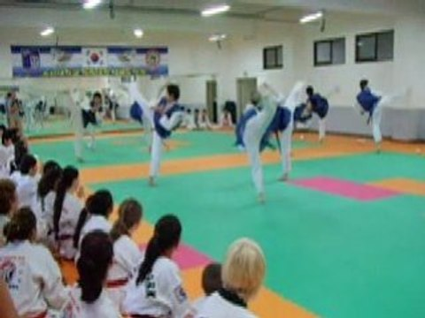 Korea 2/5 : Chosun TKD University, www.taekwondo44.com