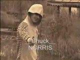 Parodie Chuck Norris