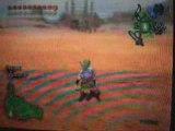 Bug dans le desert