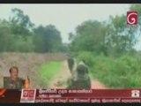 Wanni operation 17th november 2008 Troops overrun Mankulama2