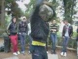 Nantes Electro Fever pour Chemical DJ