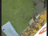 Saut elastique roropo septembre 2008