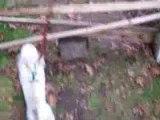 Lapin en saut : Mon ti lapinou Nougat