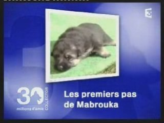 "Mabrouka ""30 millions d'amis""."