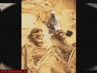 Les squelettes géants d'Arabie Saoudite