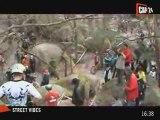 Extrême : VTT Trial en forêt de Fontainebleau
